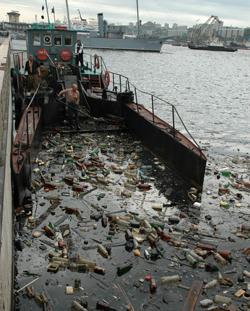Доклад экологические проблемы приморского края 1496