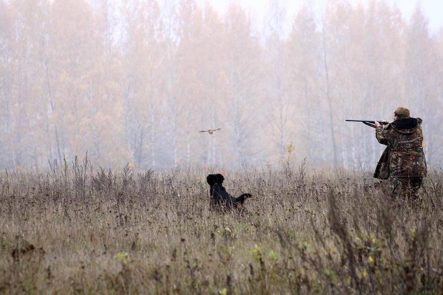 Фото - www.tuneg.ru